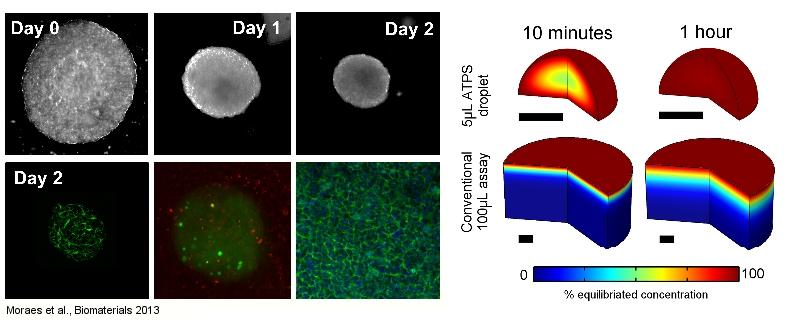 ATPS_biomaterials